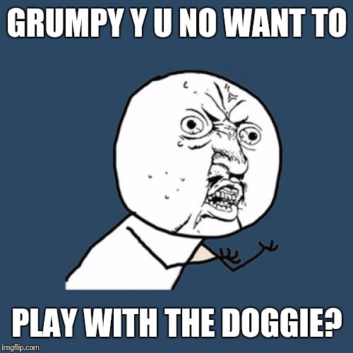 Y U No Meme | GRUMPY Y U NO WANT TO PLAY WITH THE DOGGIE? | image tagged in memes,y u no | made w/ Imgflip meme maker