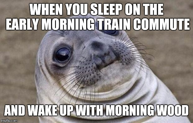 Awkward Moment Sealion Meme | WHEN YOU SLEEP ON THE EARLY MORNING TRAIN COMMUTE AND WAKE UP WITH MORNING WOOD | image tagged in memes,awkward moment sealion | made w/ Imgflip meme maker