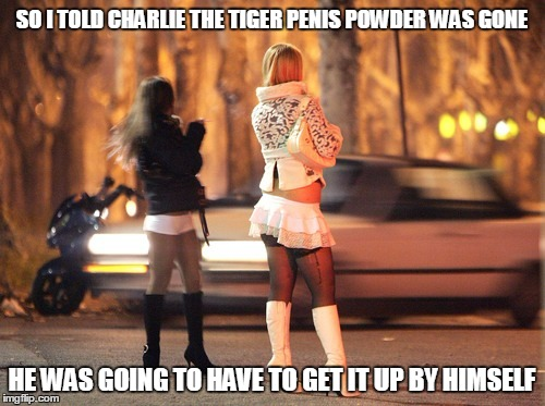 SO I TOLD CHARLIE THE TIGER P**IS POWDER WAS GONE HE WAS GOING TO HAVE TO GET IT UP BY HIMSELF | made w/ Imgflip meme maker