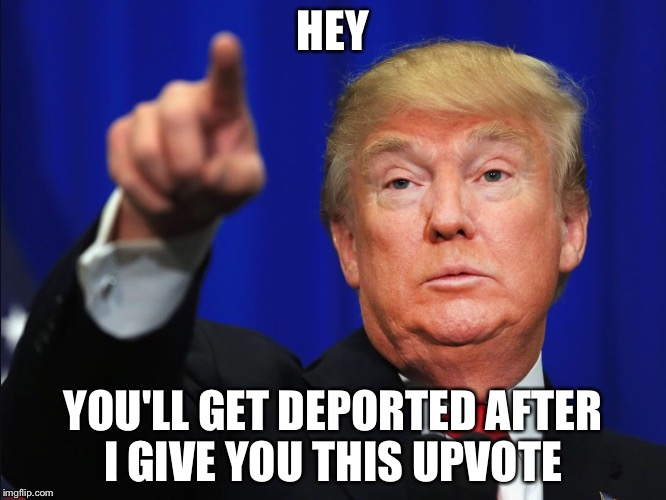Hey Donald  | HEY YOU'LL GET DEPORTED AFTER I GIVE YOU THIS UPVOTE | image tagged in hey donald | made w/ Imgflip meme maker