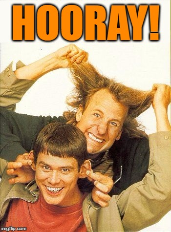 DUMB and dumber | HOORAY! | image tagged in dumb and dumber | made w/ Imgflip meme maker