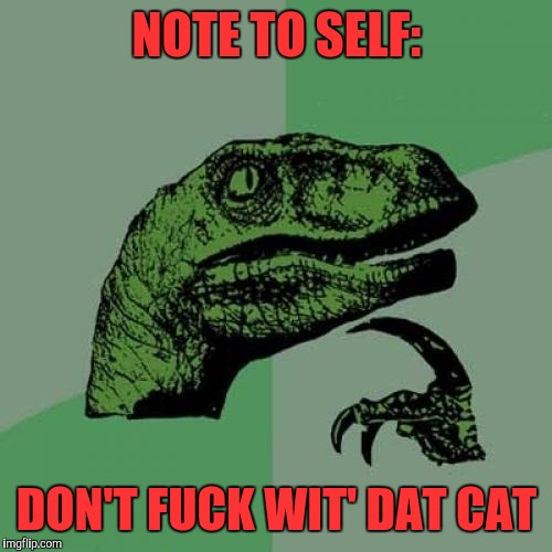 Philosoraptor Meme | NOTE TO SELF: DON'T F**K WIT' DAT CAT | image tagged in memes,philosoraptor | made w/ Imgflip meme maker