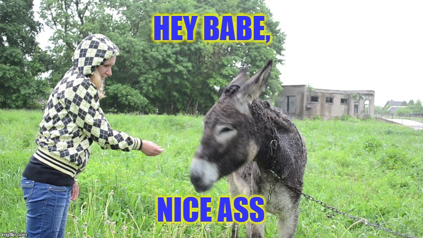 Nice Ass | HEY BABE, NICE ASS | image tagged in nice ass,can i ride that ass,i'd ride that ass | made w/ Imgflip meme maker