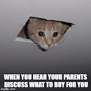 Ceiling Cat Meme | WHEN YOU HEAR YOUR PARENTS DISCUSS WHAT TO BUY FOR YOU | image tagged in memes,ceiling cat | made w/ Imgflip meme maker