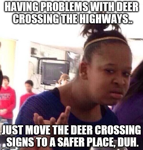 I have an Idea | HAVING PROBLEMS WITH DEER CROSSING THE HIGHWAYS.. JUST MOVE THE DEER CROSSING SIGNS TO A SAFER PLACE, DUH. | image tagged in memes,black girl wat,special kind of stupid,knowledge | made w/ Imgflip meme maker