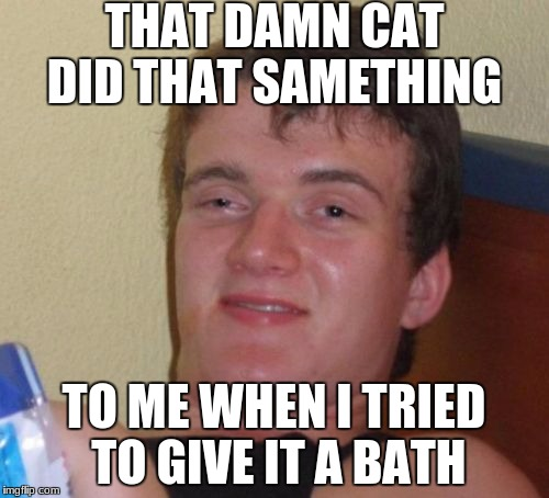 10 Guy Meme | THAT DAMN CAT DID THAT SAMETHING TO ME WHEN I TRIED TO GIVE IT A BATH | image tagged in memes,10 guy | made w/ Imgflip meme maker