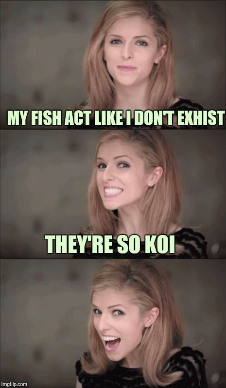 Maybe they're just playin' hard to get. | MY FISH ACT LIKE I DON'T EXHIST THEY'RE SO KOI | image tagged in memes,bad pun anna kendrick,sewmyeyesshut | made w/ Imgflip meme maker