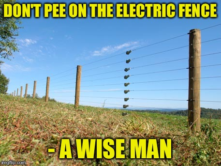 A wise man once said... Philosopher Week - A NemoNeem1221 Event - May 15-21 | DON'T PEE ON THE ELECTRIC FENCE - A WISE MAN | image tagged in memes,philosopher week,electric fence,not the place to go,someone knows what im talking about,nemoneem1221 | made w/ Imgflip meme maker