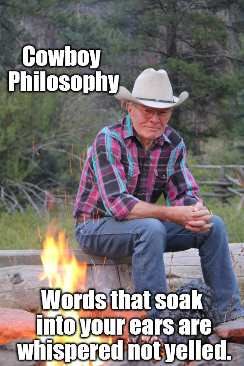 We often forget the real philosophers of our time. Philosopher Week | Cowboy Philosophy Words that soak into your ears are whispered not yelled. | image tagged in philosopher week,cowboys,impact,words | made w/ Imgflip meme maker