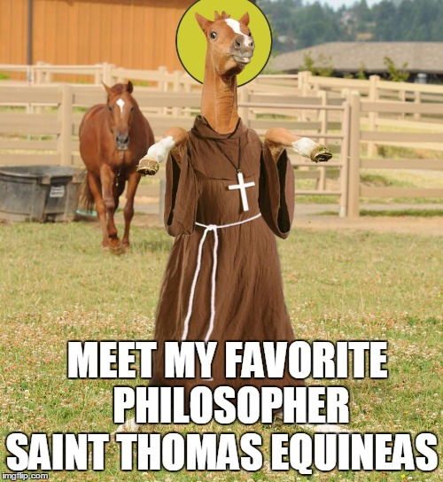 Holy Horse Sense! -- Philosopher Week - A NemoNeem1221 Event - May 15-21 | MEET MY FAVORITE PHILOSOPHER SAINT THOMAS EQUINEAS | image tagged in saint thomas equineas | made w/ Imgflip meme maker