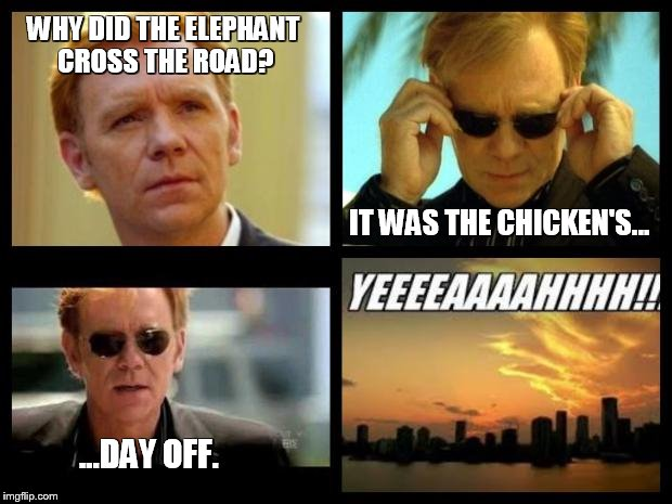 CSI | WHY DID THE ELEPHANT CROSS THE ROAD? IT WAS THE CHICKEN'S... ...DAY OFF. | image tagged in csi | made w/ Imgflip meme maker