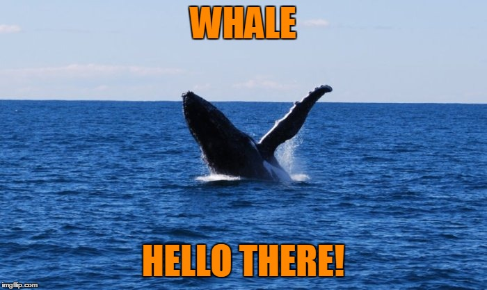 WHALE HELLO THERE! | made w/ Imgflip meme maker