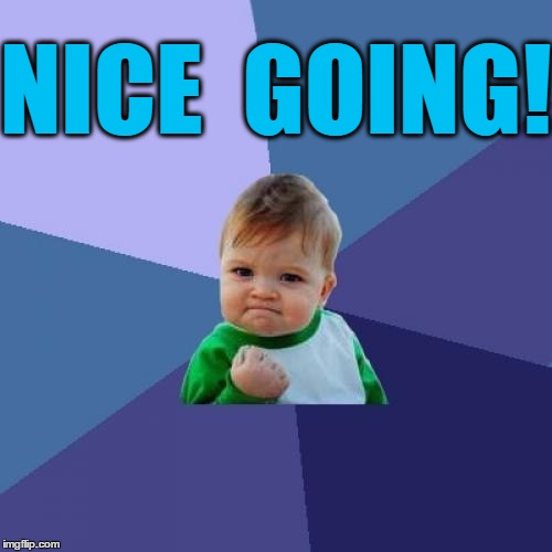 Success Kid Meme | NICE  GOING! | image tagged in memes,success kid | made w/ Imgflip meme maker