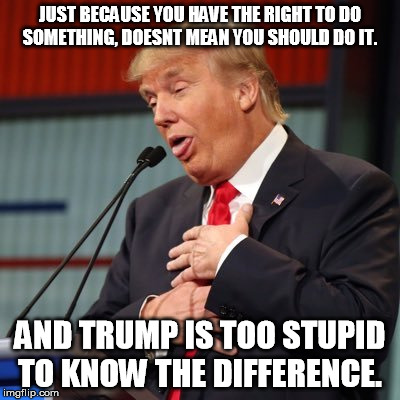 Trump | JUST BECAUSE YOU HAVE THE RIGHT TO DO SOMETHING, DOESNT MEAN YOU SHOULD DO IT. AND TRUMP IS TOO STUPID TO KNOW THE DIFFERENCE. | image tagged in stupid,trump,president,russia | made w/ Imgflip meme maker