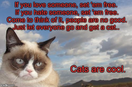 Grumpy Cat Sky | If you love someone, set 'em free. If you hate someone, set 'em free. Come to think of it, people are no good. Just let everyone go and get  | image tagged in memes,grumpy cat sky,grumpy cat | made w/ Imgflip meme maker