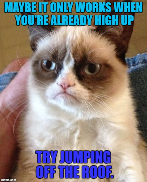 Grumpy Cat Meme | MAYBE IT ONLY WORKS WHEN YOU'RE ALREADY HIGH UP TRY JUMPING OFF THE ROOF. | image tagged in memes,grumpy cat | made w/ Imgflip meme maker
