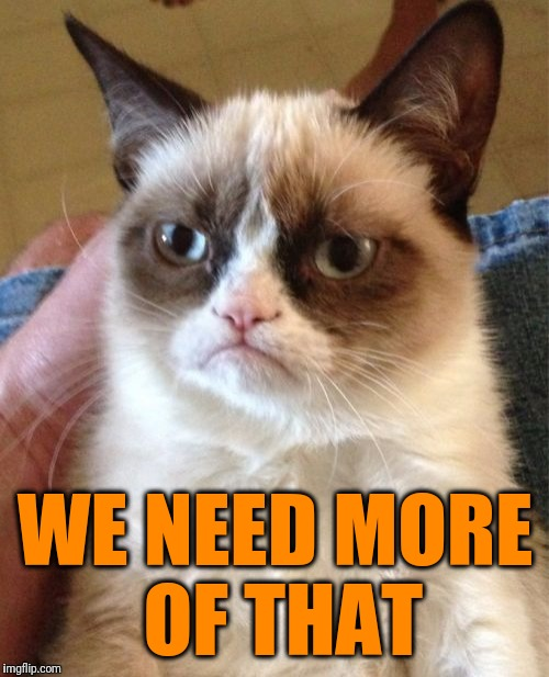 Grumpy Cat Meme | WE NEED MORE OF THAT | image tagged in memes,grumpy cat | made w/ Imgflip meme maker