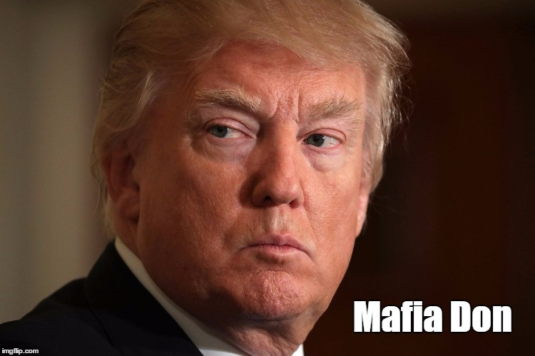 """Donald Trump, Mafia Don"" | Mafia Don | image tagged in devious donald,deplorable donald,dishonorable donald,despicable donald,damnable donald,donald dick | made w/ Imgflip meme maker"