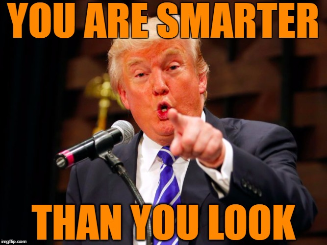 trump point | YOU ARE SMARTER THAN YOU LOOK | image tagged in trump point | made w/ Imgflip meme maker