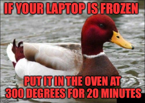 Malicious Advice Mallard Gives Tech Support | IF YOUR LAPTOP IS FROZEN PUT IT IN THE OVEN AT 300 DEGREES FOR 20 MINUTES | image tagged in memes,malicious advice mallard,frozen laptop,dont try this at home,it works for trolls though | made w/ Imgflip meme maker