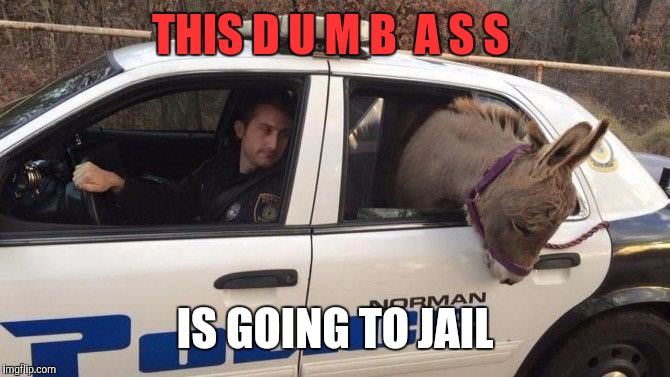 Breaking the law! | THIS D U M B  A S S IS GOING TO JAIL | image tagged in dumbass,cops | made w/ Imgflip meme maker