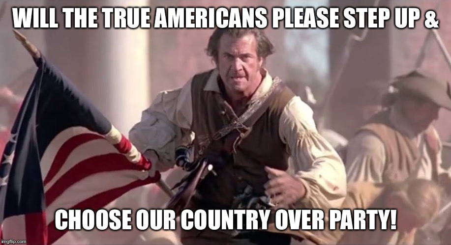 The Patriot | WILL THE TRUE AMERICANS PLEASE STEP UP & CHOOSE OUR COUNTRY OVER PARTY! | image tagged in the patriot,patriotic,true american,country over party,impeach trump,donald trump | made w/ Imgflip meme maker