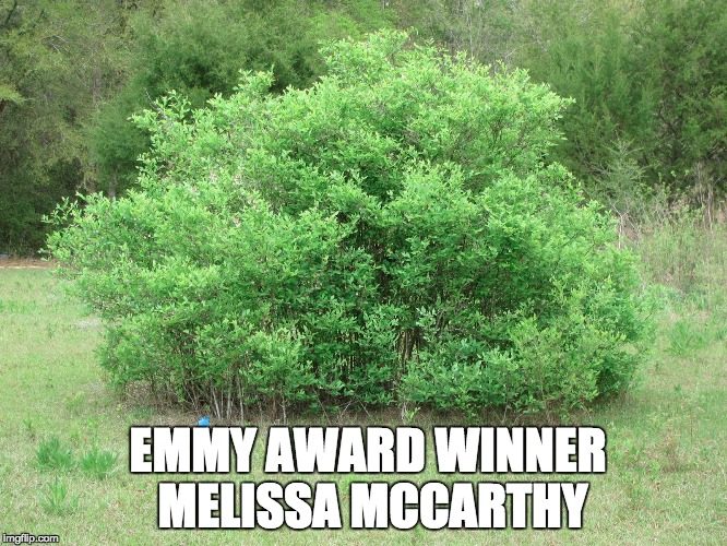 Melissa Mccarthy | EMMY AWARD WINNER MELISSA MCCARTHY | image tagged in sean spicer,bushes,melissa mccarthy,white house | made w/ Imgflip meme maker