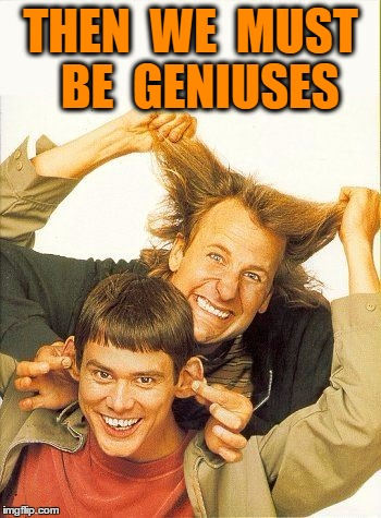DUMB and dumber | THEN  WE  MUST  BE  GENIUSES | image tagged in dumb and dumber | made w/ Imgflip meme maker