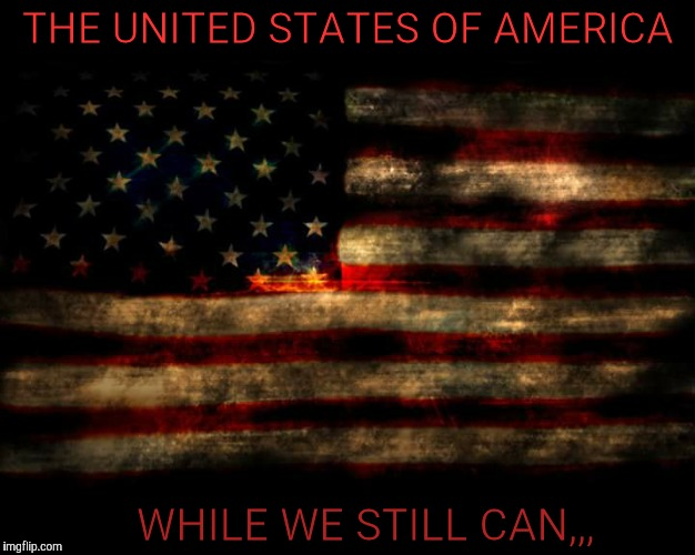 THE UNITED STATES OF AMERICA WHILE WE STILL CAN,,, | image tagged in usa flag | made w/ Imgflip meme maker