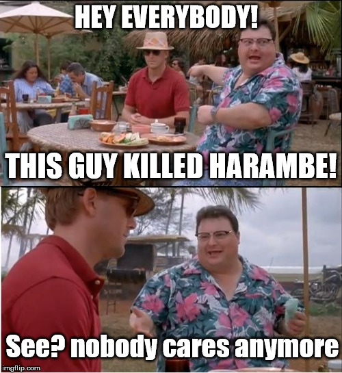 For those of you who said the Harambe memes would never die... | HEY EVERYBODY! See? nobody cares anymore THIS GUY KILLED HARAMBE! | image tagged in memes,see nobody cares,harambe,funny,dead memes | made w/ Imgflip meme maker