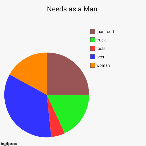 Needs as a Man | woman, beer, tools, truck, man food | image tagged in funny,pie charts | made w/ Imgflip pie chart maker