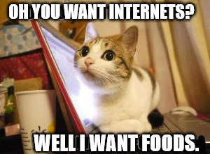 Kitty is hungry. | OH YOU WANT INTERNETS? WELL I WANT FOODS. | image tagged in hungry kitty cat on laptop,cats,funny memes,pc,cat,food | made w/ Imgflip meme maker