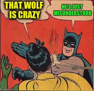 Batman Slapping Robin Meme | THAT WOLF IS CRAZY HE'S JUST MISUNDERSTOOD | image tagged in memes,batman slapping robin | made w/ Imgflip meme maker