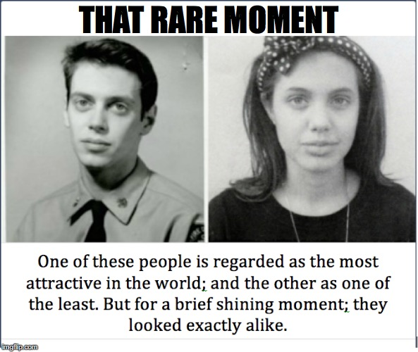 Look-a-likes | THAT RARE MOMENT | image tagged in angelina jolie,steve buscemi | made w/ Imgflip meme maker