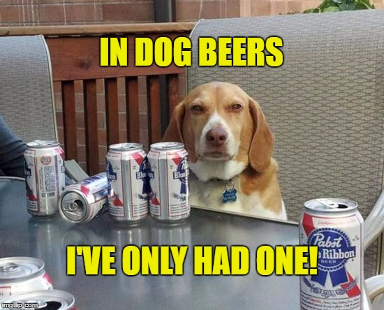 IN DOG BEERS I'VE ONLY HAD ONE! | image tagged in dog beer | made w/ Imgflip meme maker