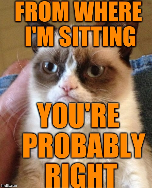 Grumpy Cat Meme | FROM WHERE I'M SITTING YOU'RE  PROBABLY RIGHT | image tagged in memes,grumpy cat | made w/ Imgflip meme maker