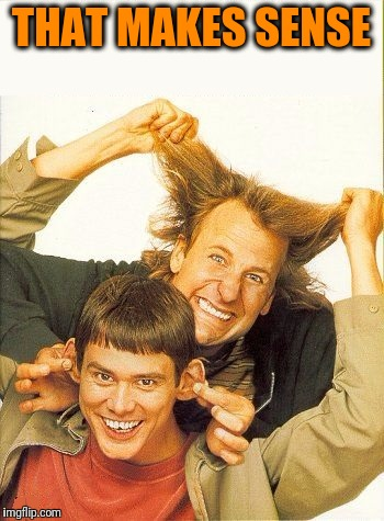 DUMB and dumber | THAT MAKES SENSE | image tagged in dumb and dumber | made w/ Imgflip meme maker