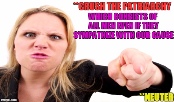 **CRUSH THE PATRIARCHY WHICH CONSISTS OF ALL MEN EVEN IF THEY SYMPATHIZE WITH OUR CAUSE **NEUTER | made w/ Imgflip meme maker