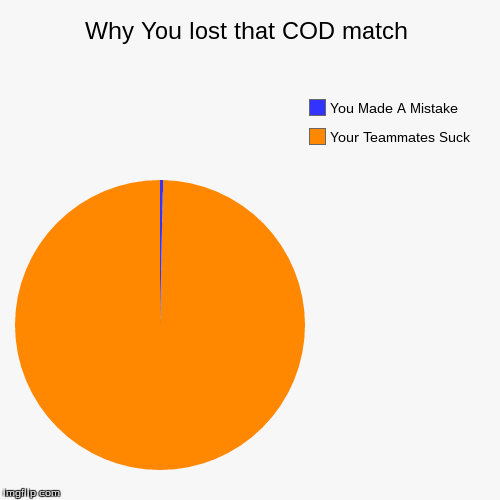 Why You Lost That COD Match... | Why You lost that COD match | Your Teammates Suck, You Made A Mistake | image tagged in funny,pie charts,cod,call of duty | made w/ Imgflip chart maker