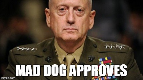 Mattis | MAD DOG APPROVES | image tagged in mattis | made w/ Imgflip meme maker