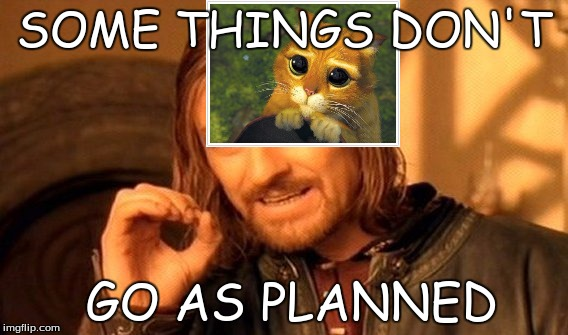 One Does Not Simply Meme | SOME THINGS DON'T GO AS PLANNED | image tagged in memes,one does not simply | made w/ Imgflip meme maker