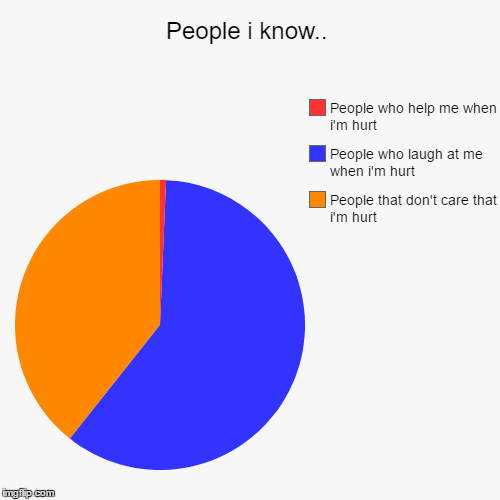 People i know.. | People that don't care that i'm hurt, People who laugh at me when i'm hurt, People who help me when i'm hurt | image tagged in funny,pie charts | made w/ Imgflip pie chart maker