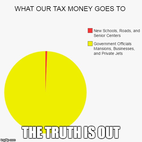 THE TRUTH IS OUT | image tagged in pie charts,memes | made w/ Imgflip meme maker