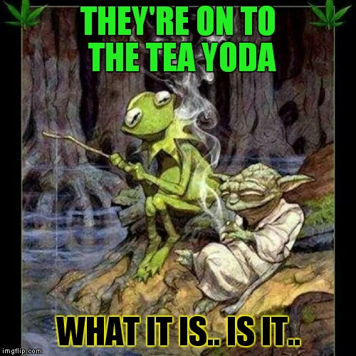 THEY'RE ON TO THE TEA YODA WHAT IT IS.. IS IT.. | made w/ Imgflip meme maker