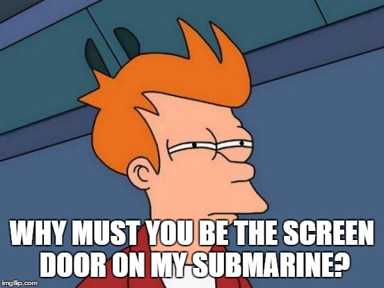 Futurama Fry Meme | WHY MUST YOU BE THE SCREEN DOOR ON MY SUBMARINE? | image tagged in memes,futurama fry | made w/ Imgflip meme maker