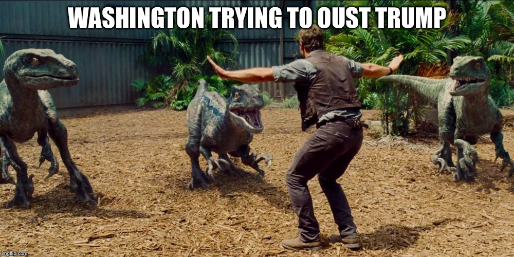 Jurassic park raptor | WASHINGTON TRYING TO OUST TRUMP | image tagged in jurassic park raptor | made w/ Imgflip meme maker