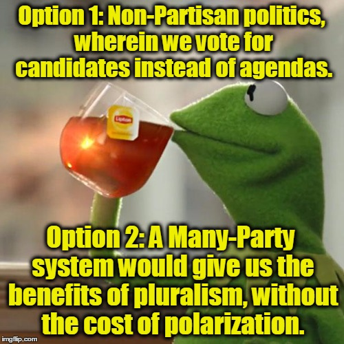 But Thats None Of My Business Meme | Option 1: Non-Partisan politics, wherein we vote for candidates instead of agendas. Option 2: A Many-Party system would give us the benefits | image tagged in memes,but thats none of my business,kermit the frog | made w/ Imgflip meme maker