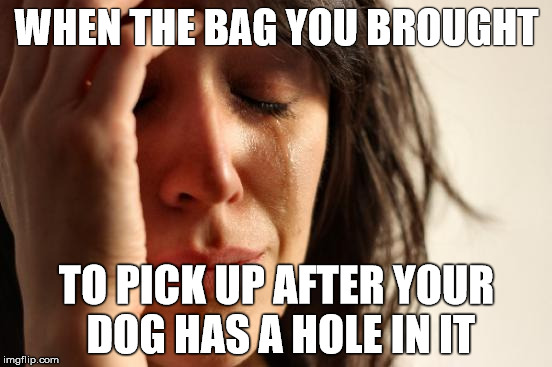 First World Problems Meme | WHEN THE BAG YOU BROUGHT TO PICK UP AFTER YOUR DOG HAS A HOLE IN IT | image tagged in memes,first world problems | made w/ Imgflip meme maker