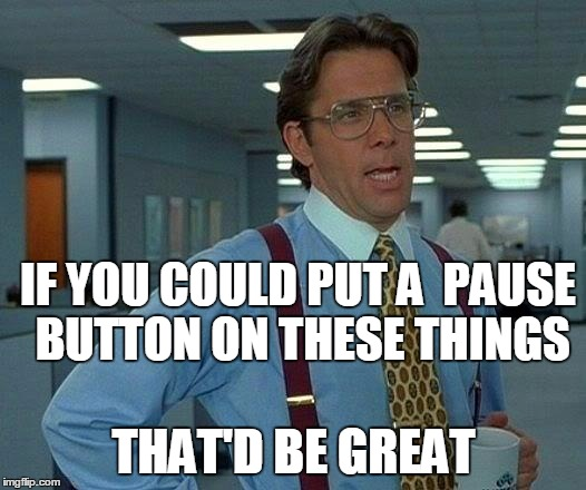 That Would Be Great Meme | IF YOU COULD PUT A  PAUSE BUTTON ON THESE THINGS THAT'D BE GREAT | image tagged in memes,that would be great | made w/ Imgflip meme maker