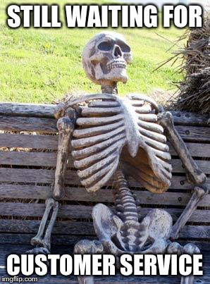 I was at the DMV yesterday for 3 hours waiting to get a light changed. I made this in memory of those 3 hours. | STILL WAITING FOR CUSTOMER SERVICE | image tagged in memes,waiting skeleton,customer service,still waiting | made w/ Imgflip meme maker